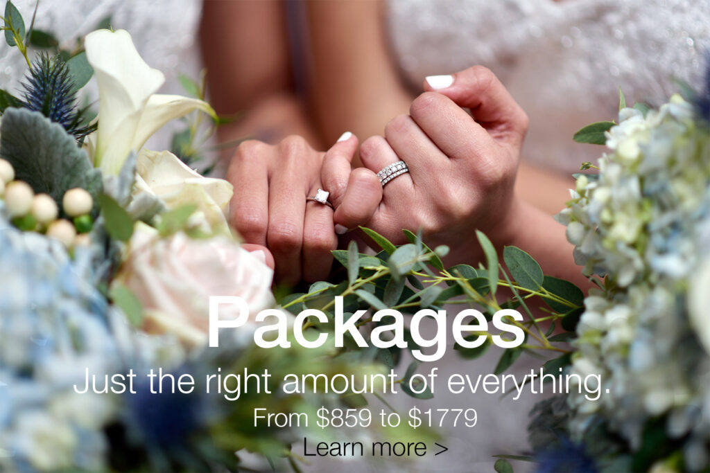 albertson wedding chapel civil wedding packages
